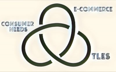 Tying It All Together: E-Commerce, TLEs, and Consumer-Oriented Services